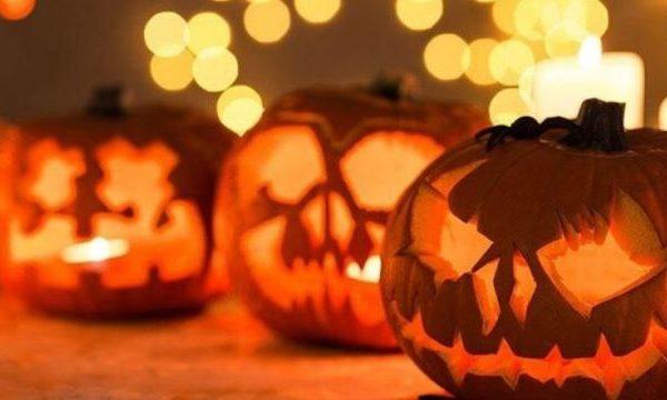 ofra-matera-halloween